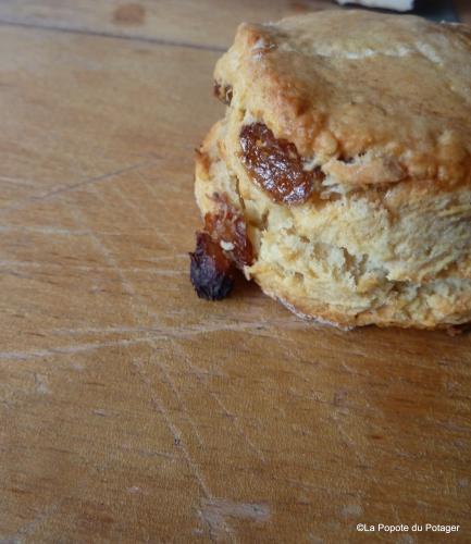 jamie oliver, scones, raisins, scones aux raisins